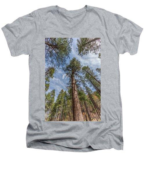 Pine Cathedral On The West Fork Men's V-Neck T-Shirt