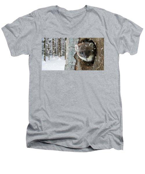 Pine Marten In Tree In Winter Men's V-Neck T-Shirt