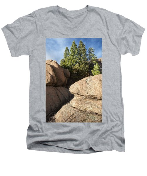 Pines In Granite Men's V-Neck T-Shirt