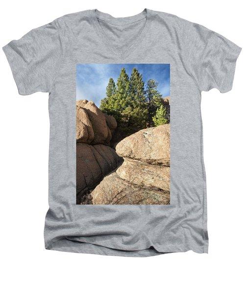 Pines In Granite Men's V-Neck T-Shirt