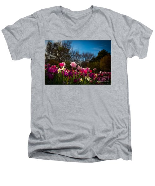 Pink And Purple Tulips Men's V-Neck T-Shirt by John Roberts