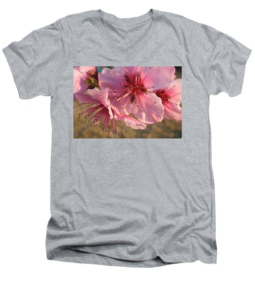 Pink Blossoms Men's V-Neck T-Shirt by Barbara Yearty