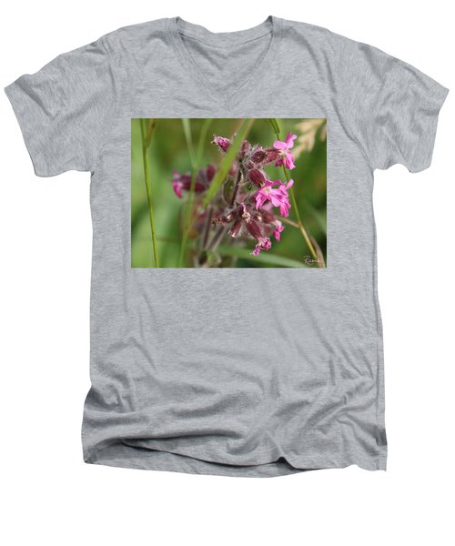 Pink Campion In August Men's V-Neck T-Shirt