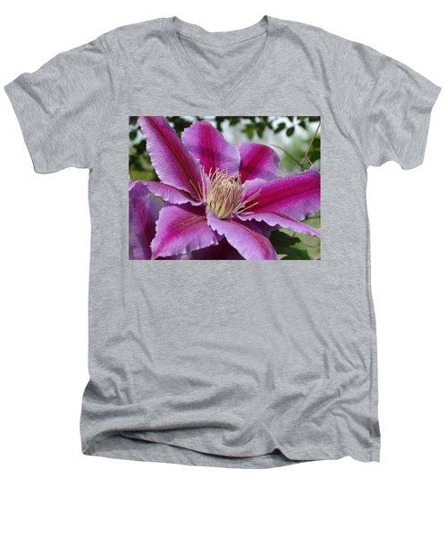 Pink Clematis Vine Men's V-Neck T-Shirt by Rebecca Overton
