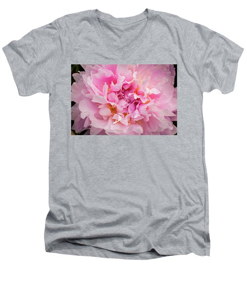 Pink Double Peony Men's V-Neck T-Shirt