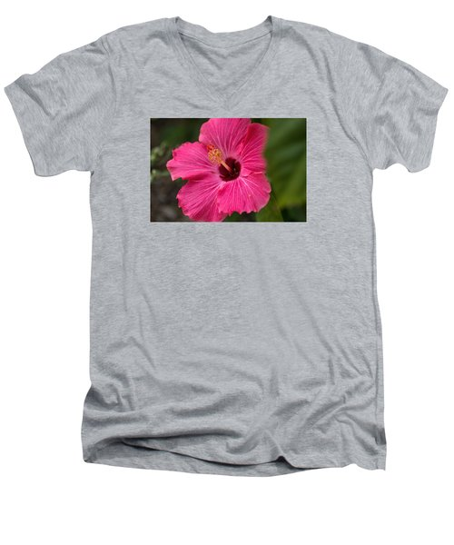 Pink Hibiscus Men's V-Neck T-Shirt by Dorothy Cunningham