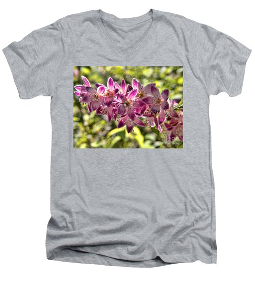 Pink Ladies In Spring Glory Men's V-Neck T-Shirt