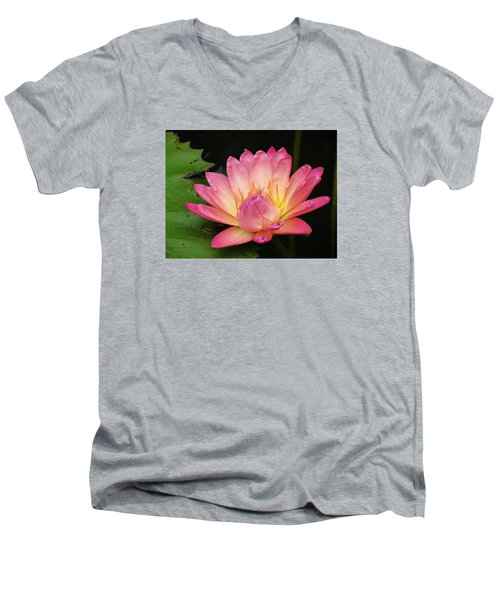 Pink Lily 1 Men's V-Neck T-Shirt