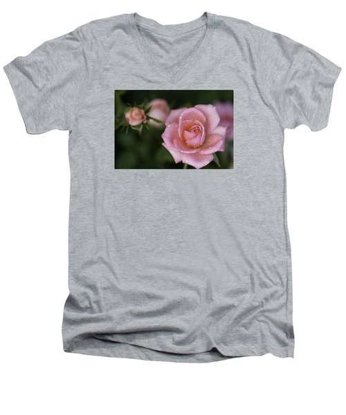 Pink Miniature Roses 3 Men's V-Neck T-Shirt