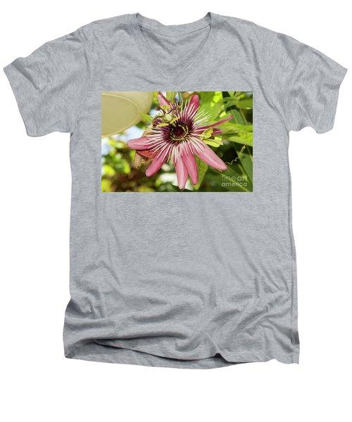 Pink Passiflora Men's V-Neck T-Shirt by Elvira Ladocki