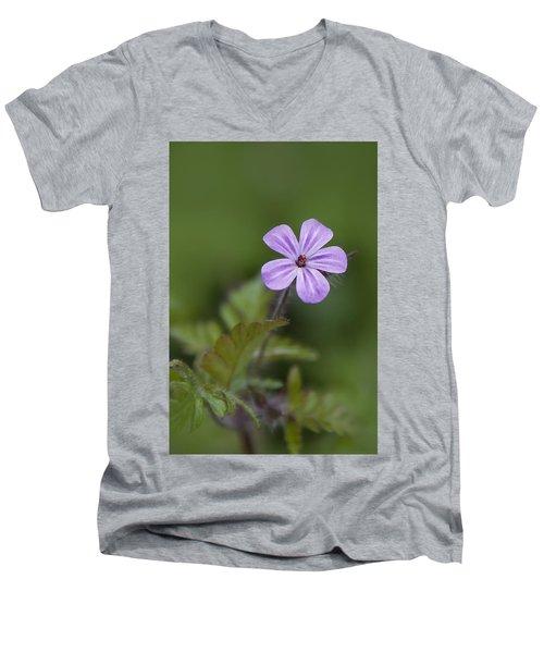 Pink Phlox Wildflower Men's V-Neck T-Shirt