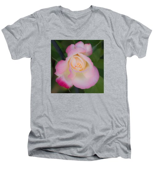 Pink Tinged Rose Men's V-Neck T-Shirt by Cathy Donohoue
