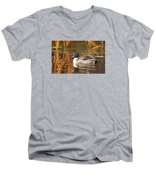 Pintail Men's V-Neck T-Shirt