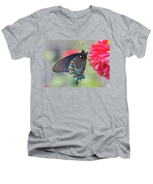 Pipevine Swallowtail Butterfly Men's V-Neck T-Shirt