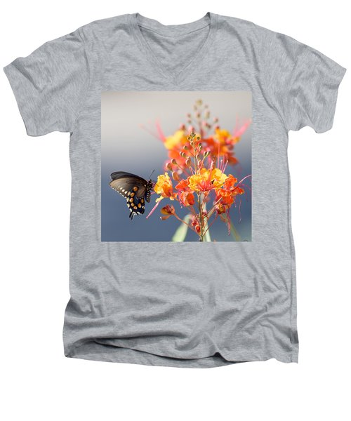 Pipevine Swallowtail Men's V-Neck T-Shirt