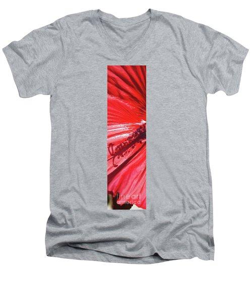 Pistil Shadow Men's V-Neck T-Shirt