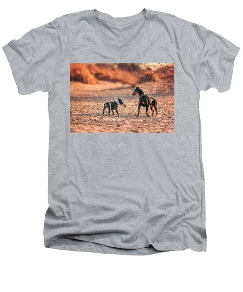 Men's V-Neck T-Shirt featuring the photograph Pitbull And Doberman by Peter Lakomy