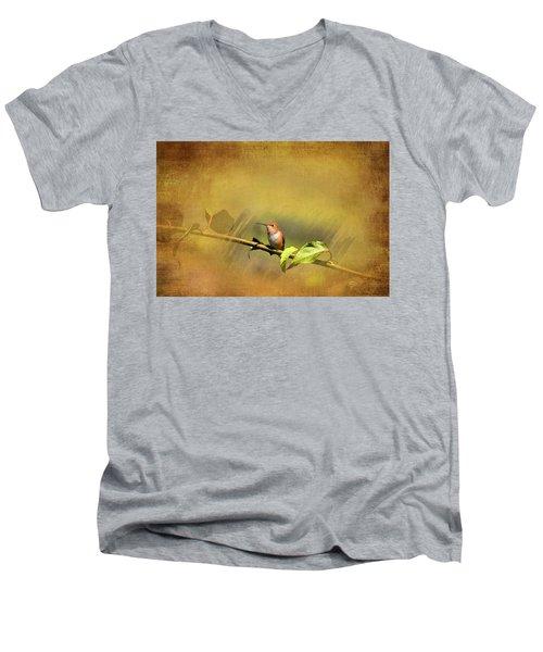 Plate 112 - Hummingbird Grunge Series Men's V-Neck T-Shirt