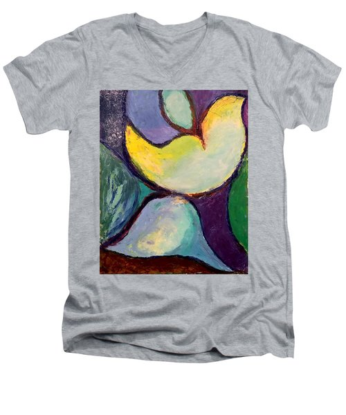 Play Of Light Men's V-Neck T-Shirt