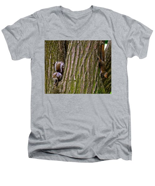 Playful Squirrels  Men's V-Neck T-Shirt
