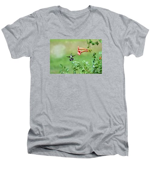 Playing Around Men's V-Neck T-Shirt