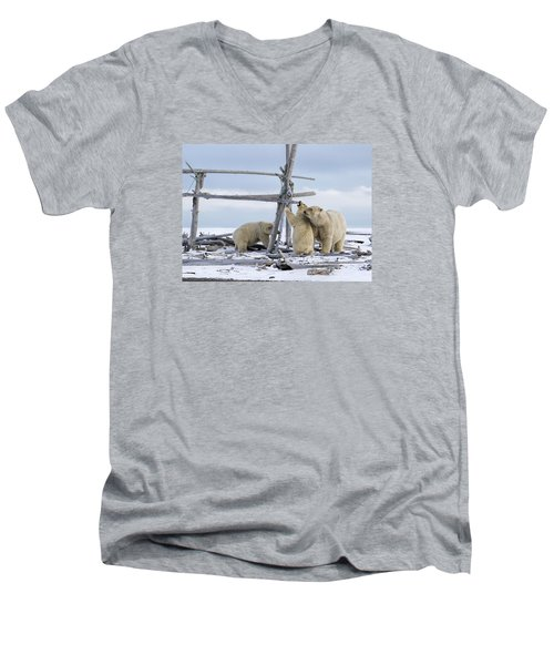 Playtime In The Arctic Men's V-Neck T-Shirt