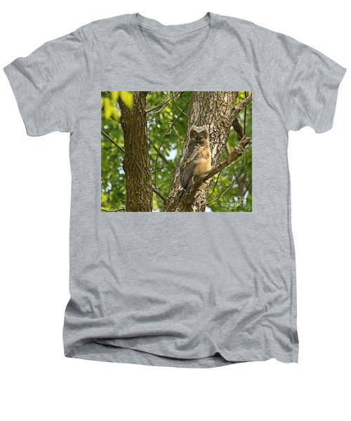 Pleasantly Surprised  Men's V-Neck T-Shirt by Heather King
