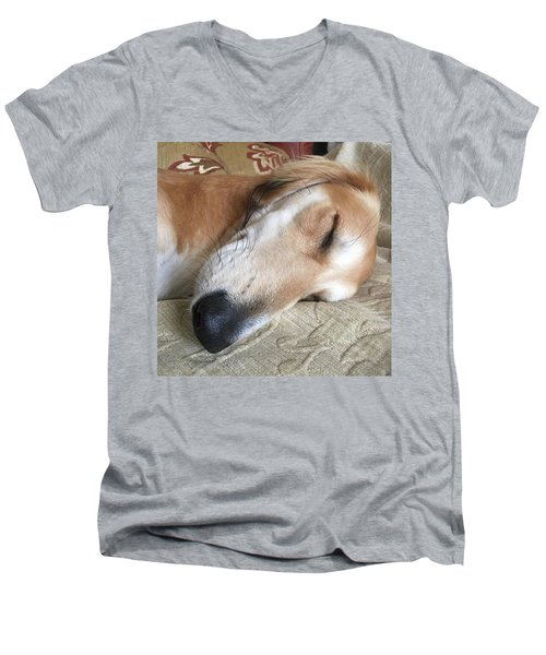 Please Be Quiet. Saluki Men's V-Neck T-Shirt