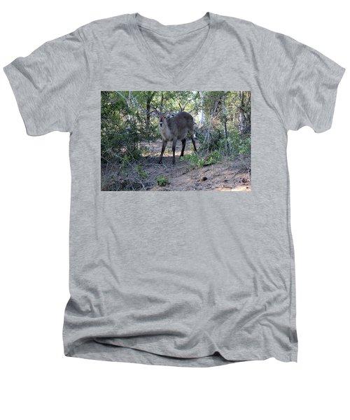 Please Don't Hurt Me Men's V-Neck T-Shirt