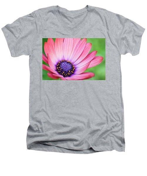 Pleasing Petals Men's V-Neck T-Shirt