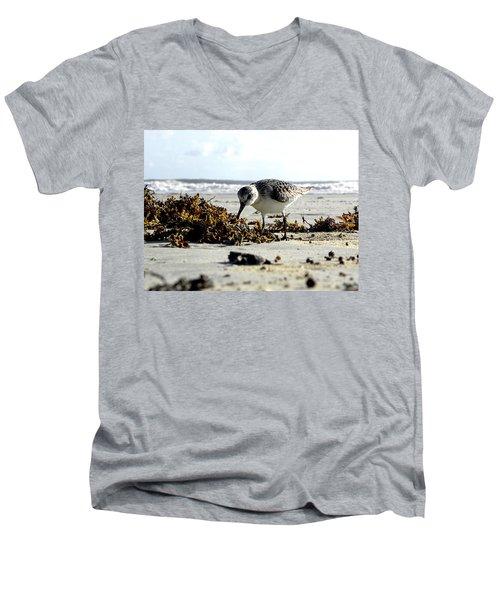 Plover On Daytona Beach Men's V-Neck T-Shirt by Chris Mercer