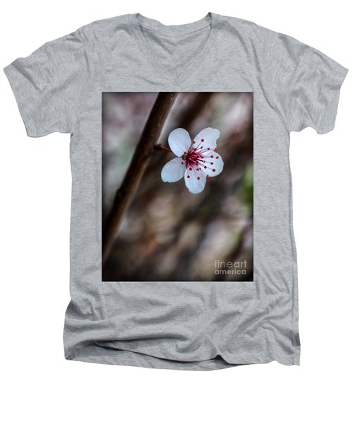 Plum Flower Men's V-Neck T-Shirt