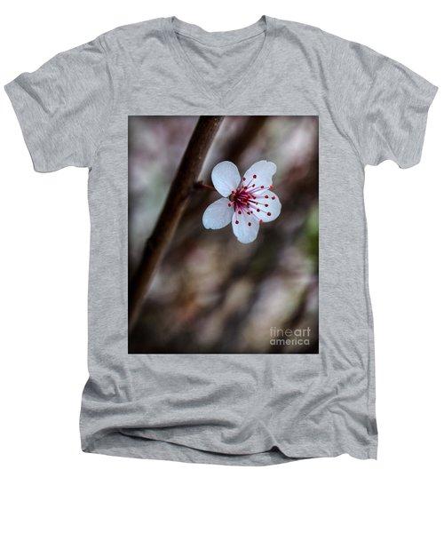 Plum Flower Men's V-Neck T-Shirt