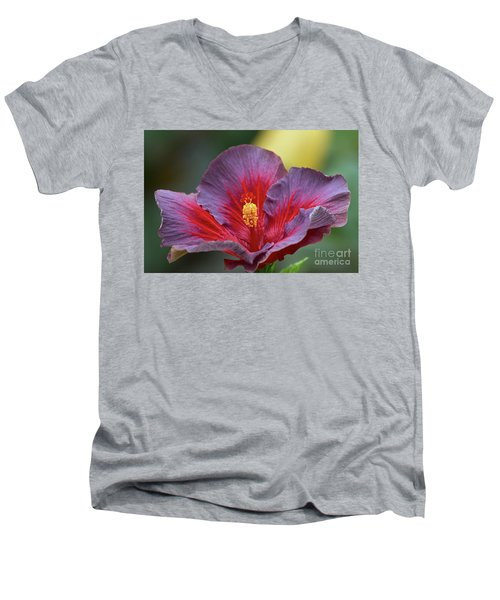 Plum Wonderful Men's V-Neck T-Shirt