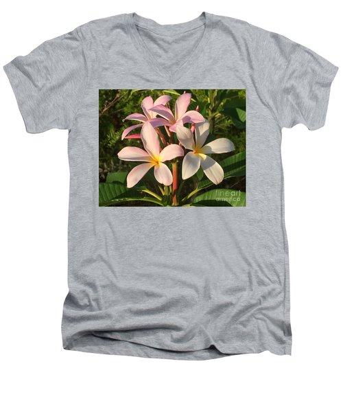 Plumeria Heaven Men's V-Neck T-Shirt