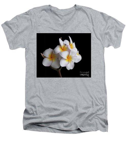 Plumeria Men's V-Neck T-Shirt