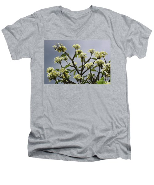Plumeria Men's V-Neck T-Shirt