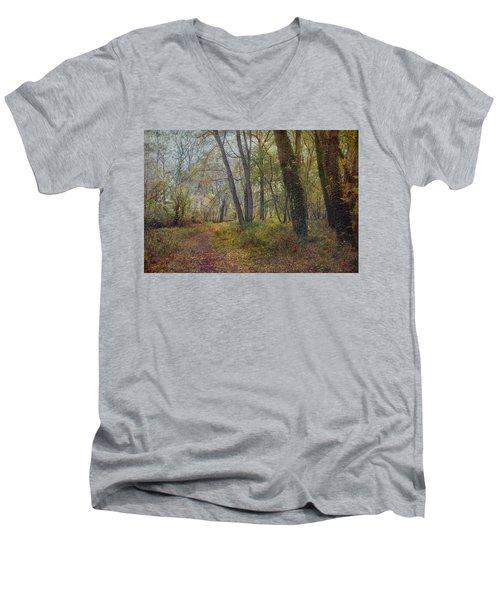 Poetic Season Men's V-Neck T-Shirt