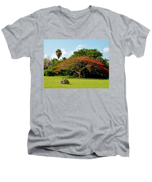 Poinciana Men's V-Neck T-Shirt by Amar Sheow