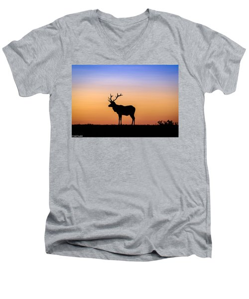 Point Reyes Elk Men's V-Neck T-Shirt