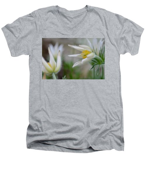 Points Men's V-Neck T-Shirt by Janet Rockburn