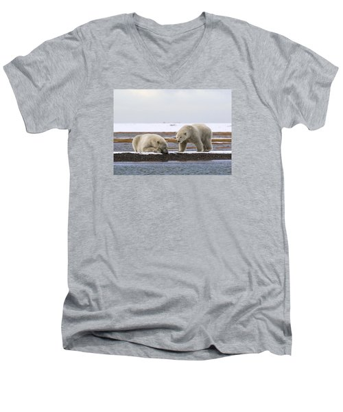 Polar Bear Zzzzzzz's Men's V-Neck T-Shirt