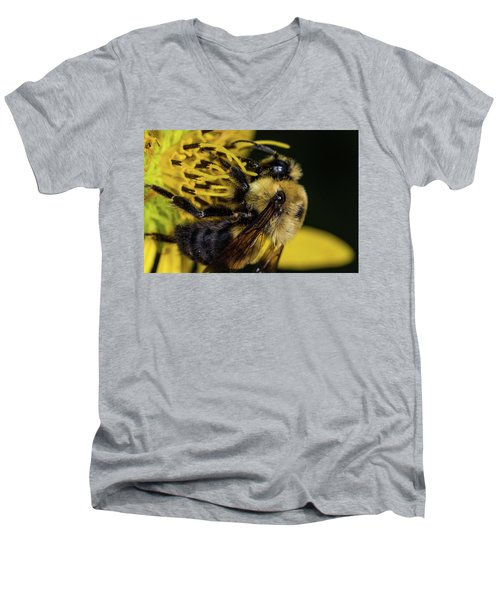 Men's V-Neck T-Shirt featuring the photograph Pollen Collector  by Jay Stockhaus