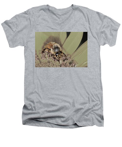 Pollinating Bee Men's V-Neck T-Shirt
