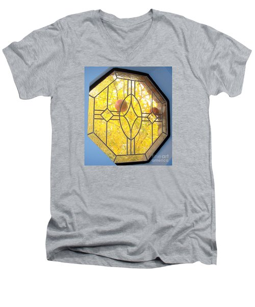 Pomegranate Peek A Boo Men's V-Neck T-Shirt by Laurie Morgan