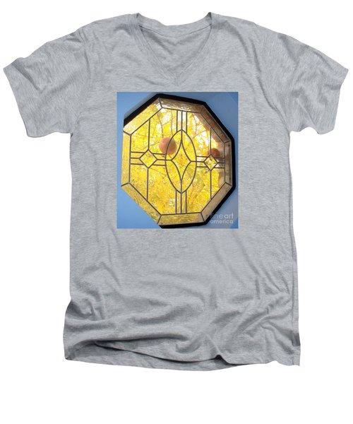 Pomegranate Peek A Boo Men's V-Neck T-Shirt