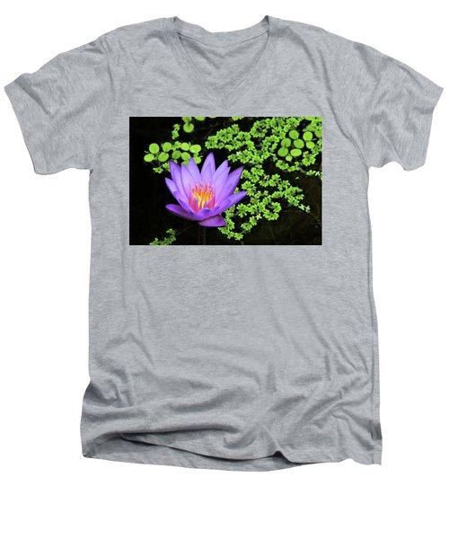 Pond Beauty Men's V-Neck T-Shirt