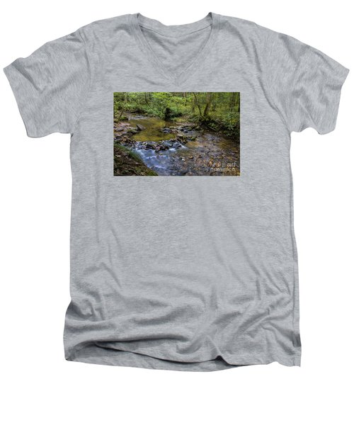 Pool At Cooper Creek Men's V-Neck T-Shirt by Barbara Bowen