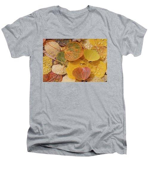 Pool With Aspen Leaves Men's V-Neck T-Shirt