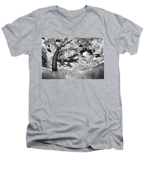 Men's V-Neck T-Shirt featuring the photograph Poplar On The Edge Of A Field by Dan Jurak